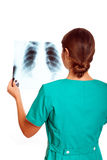 Female doctor examining an x-ray image Stock Photography
