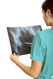 Female doctor examining an x-ray image. Stock Photography