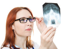 Female doctor examining X-ray image Royalty Free Stock Photography