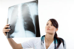 Female doctor examining an x-ray image Royalty Free Stock Photo
