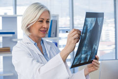 Female doctor examining x-ray report Stock Photography