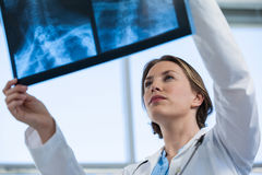 Female doctor examining x-ray report Royalty Free Stock Images