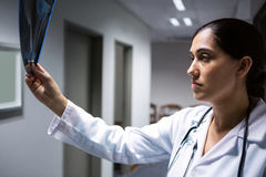 Female doctor examining x-ray report in corridor Royalty Free Stock Photography