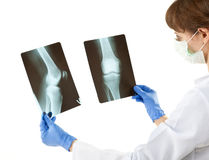 Female doctor examining X-rays Stock Photography