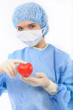 Female doctor holding a heart Stock Photos