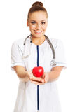 Female doctor holding heart model.  royalty free stock images