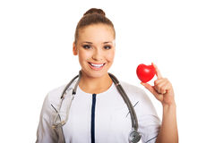 Female doctor holding heart model. Smiling female doctor holding heart model royalty free stock photo