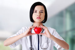 Female doctor holding heart model. Young female doctor holding heart model royalty free stock image