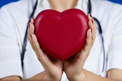 Female doctor holding red heart. Medicine,Health Care,Hospital stock photo