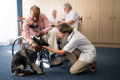 Female doctor kneeling by disabled senior man stroking puppy Royalty Free Stock Photography