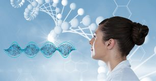 Female doctor looking at DNA structure. Digital composite of Female doctor looking at DNA structure stock images