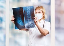 Female doctor looking at an x-ray of spine. Over blurred background royalty free stock image