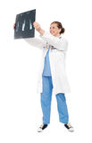 Female doctor looking at scanned x-ray report Royalty Free Stock Images