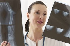 Female doctor looking to knee X-ray royalty free stock photos