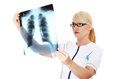 Female doctor looking at an x-ray Stock Images