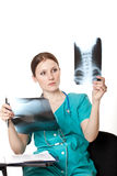 Female doctor looking at the xray pictures Stock Photography