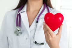 Female doctor's hands holding red heart royalty free stock images