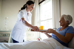 Female doctor serving breakfast to senior woman in the bedroom Royalty Free Stock Image