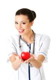 Female doctor with stethoscope holding heart model Stock Image