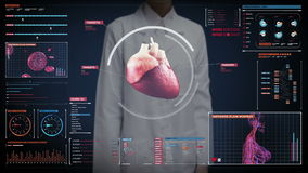 Female doctor touching digital screen, scanning heart. Human cardiovascular system. medical technology.