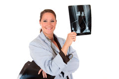 Female doctor x ray photo Stock Photography