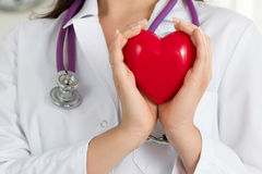 Female doctors's hands holding red heart. In front of her chest. Doctor's hand closeup. Medical help, prophylaxis or insurance concept stock image