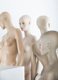 Female dolls. Female window dolls in a group Royalty Free Stock Photo