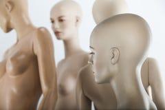 Female dolls Stock Image