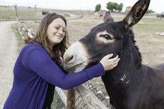 Female donkey love Royalty Free Stock Photo
