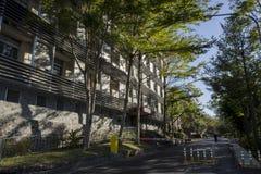 The female dorm of National Yang Ming University Royalty Free Stock Image