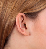 Female ear. Close up shot of a woman ear Stock Images