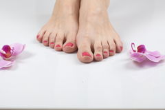 Female elegance feet red pedicure nails spa therapy Royalty Free Stock Photos