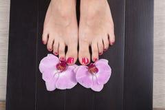 Female elegance feet red pedicure nails spa therapy. Female feet red pedicure nails Stock Photography