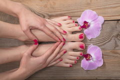 Female elegance feet red pedicure nails spa therapy Stock Images