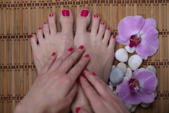 Female elegance feet red pedicure nails spa therapy Stock Photo