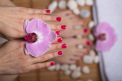 Female elegance feet red pedicure nails spa therapy Stock Photos