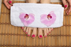 Female elegance feet red pedicure nails spa therapy Royalty Free Stock Photography