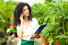 Female employee in a greenhouse Stock Photography