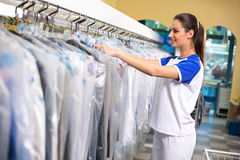 Female employees checks clothes Stock Photography