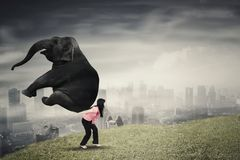 Female entrepreneur lifting an elephant on uphill Stock Photo