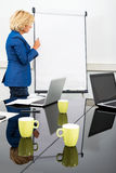 Female Environmentalist at the Flipchart Stock Image