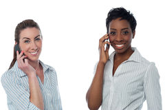 Female executives using a mobile phone Royalty Free Stock Photo