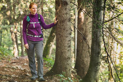 Female Explorer Hiking in a Forest Royalty Free Stock Image