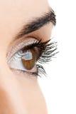Female eye Royalty Free Stock Images