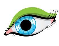 Female Eye Stock Photography