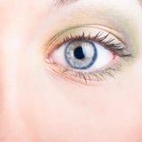 Female eye Stock Photos