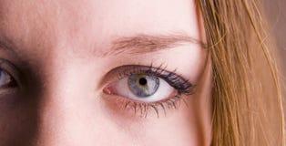 Female eye. Beauty human female eye closeup stock photos