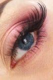 Female eye Royalty Free Stock Photography