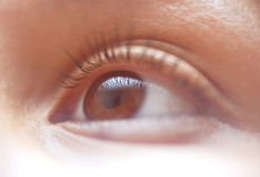 Female Eye. Brown Female Eye Royalty Free Stock Images