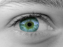 Female eye stock photos